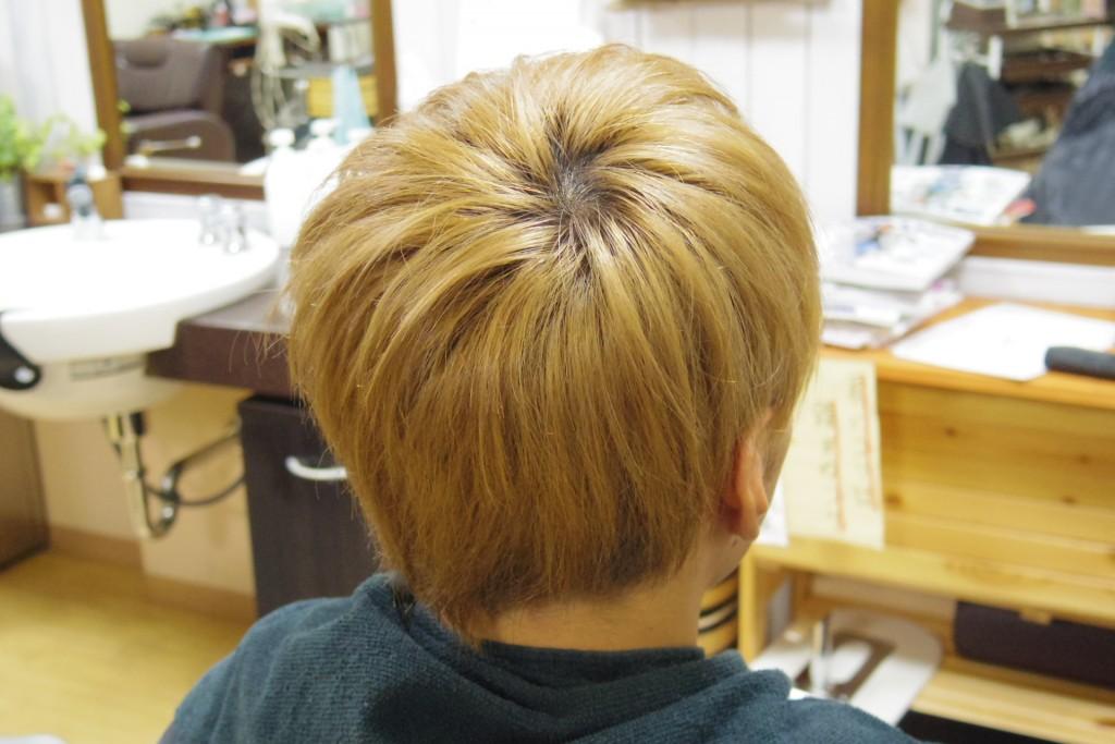 ブリーチした毛
