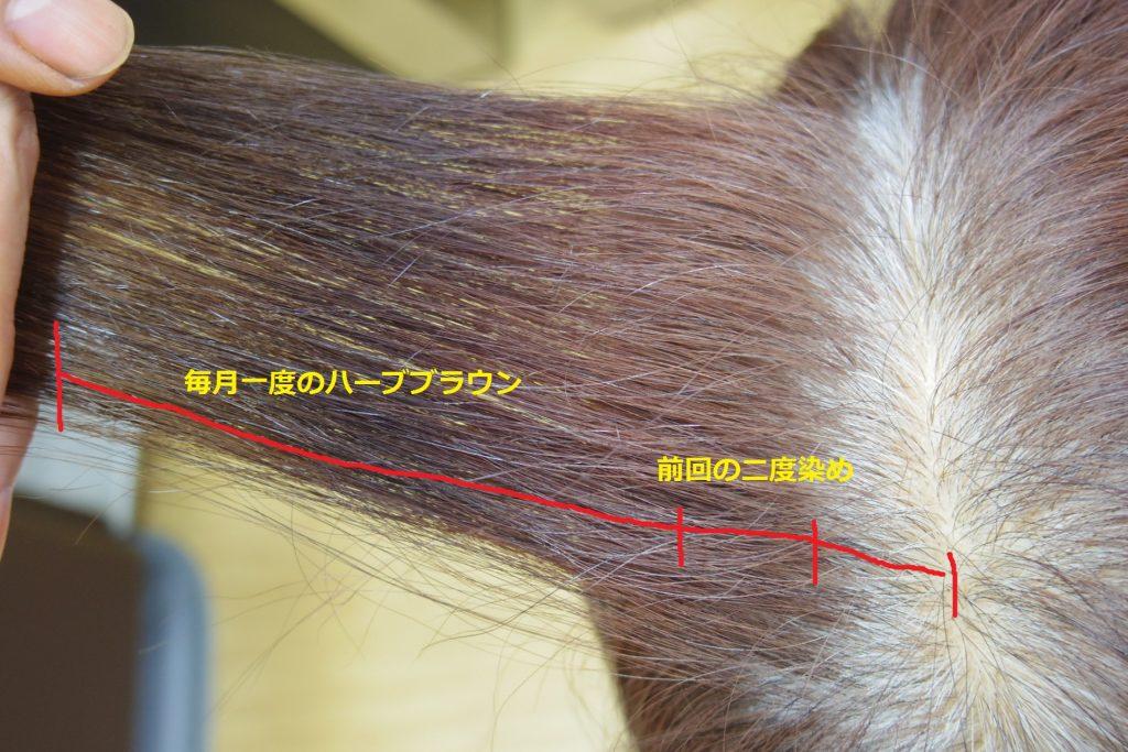 二度染めの髪色比較