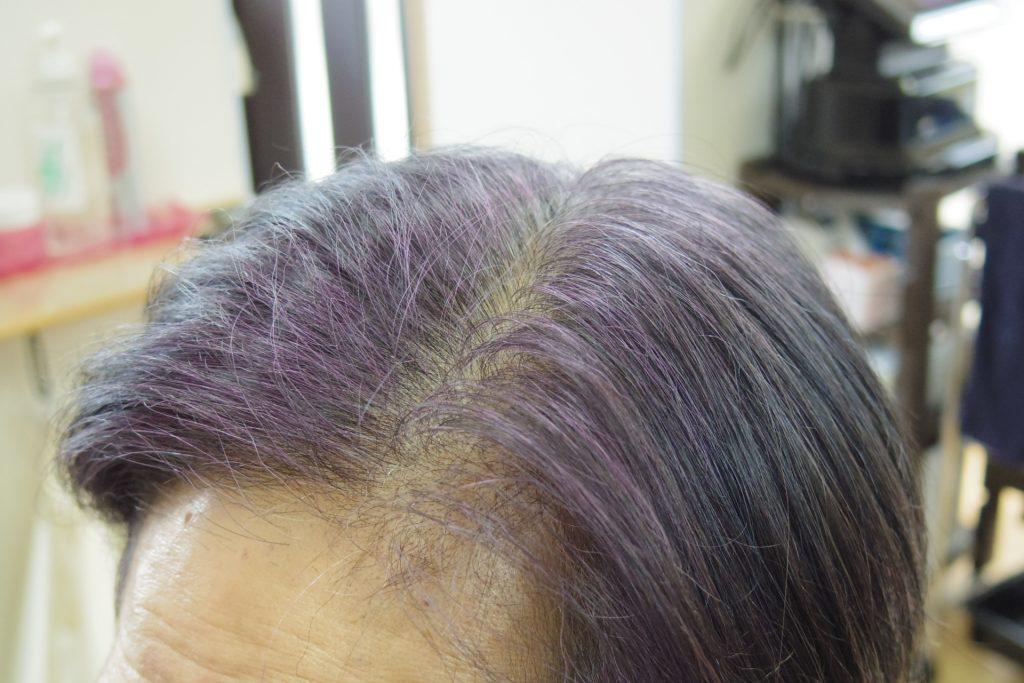 マホガニーで紫色に